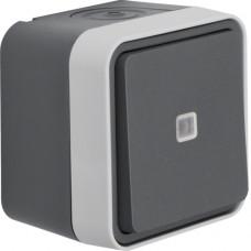 Перемикач з підсвічуванням IP55, сірий, 10АX/250В W.1 Berker 30763525