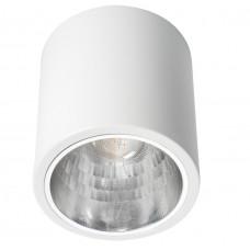 Світильник точковий NIKOR DLP-60-W, E27, IP20, білий, Kanlux 07210
