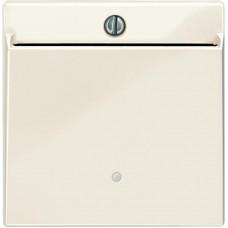 Накладка з карткою-ключем, Бежевий, глянець, System-M Merten MTN315644