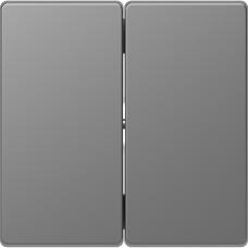 Клавіши до 2-клавішних вимикачів, Нержавіючая сталь, пластик, D-Life Merten MTN3400-6036