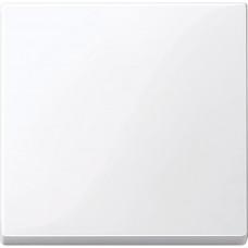 Клавіша для 1-клавішних вимикачів, Активний-білий глянець, System-M Merten MTN432125