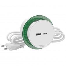 Розетка USB для зарядки в стіл, белий, Schneider Electric INS44008