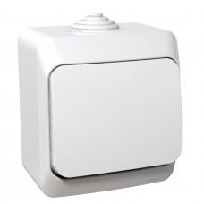 Переключатель одноклавишный, Белый, Cedar Plus WDE000560