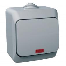 Вимикач одноклавішний з підсвіткою, Сірий, Cedar Plus WDE000614
